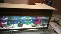 Aquarium + comptoir