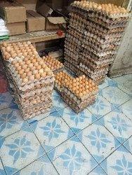Tablette d'œuf
