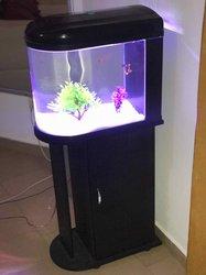 Aquarium à armoire