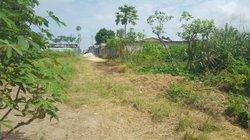 Vente Terrain Ngoyo