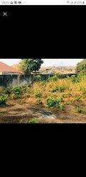 Vente terrain - Sonfonia centre