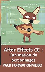 Formation en after effect animation