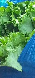Livraisons à domicile de vivriers - légumes - produits avicoles - Yamoussoukro