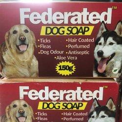 Savon chien