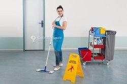 Service de nettoyage  désinfection - désinsectisation