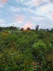 Vente terrains  - Parakou