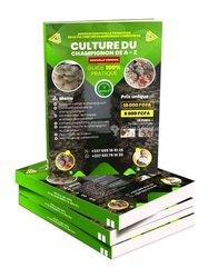 Culture champignon