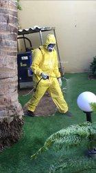 Vito - insecticide