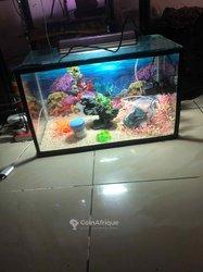Aquariums électriques