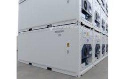 Conteneurs frigorifiques 20 et 40 pieds