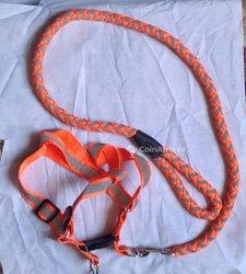 Laisse muselière orange