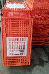 Cages de transport volailles