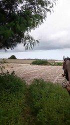 Terrains agricoles 1000 m2 - Lac Rose