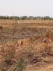 Terrain Agricole 2000 ha - Malém Niany