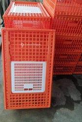Cage à volailles