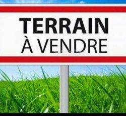 Vente Terrain - Didieni
