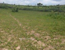 Terrain agricole 2,66 ha  - Keur madaro