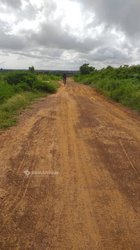 Terrain agricole 1 ha - Mboro