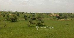 Terrain Agricole 8 ha - Séléwe - Kébémer