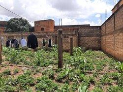 Vente terrain agricole  1270 m2 - Dassasgo