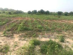 Terrain Agricole 1 ha - Keur Moussa