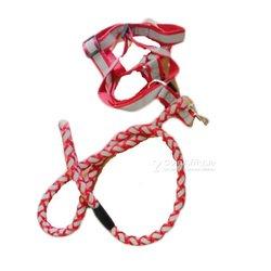 Corde de sécurité pour chien