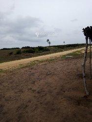 Vente terrain 1 ha - Porto-Novo