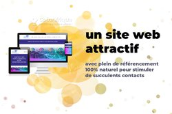 Conception de site web professionnel