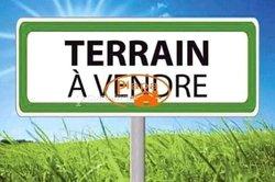 Vente terrain 2 hectares à Tsévié _ kpevego