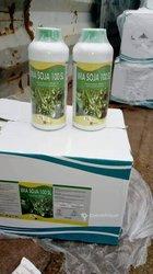 Herbicide sélectif soja - haricots et arachide