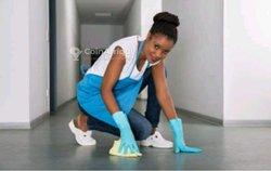 Recherche - ménagère
