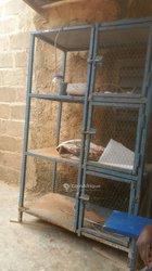 Cage élevage
