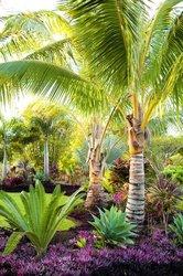 Design - aménagement de jardins d'espaces verts