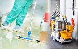 service de désinfection   / nettoyage