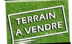 Vente Terrain agricole 1210 hectares - Notsè Kpové