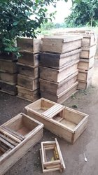 Ruche locale apiculture