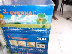 Ventilateur Evernal