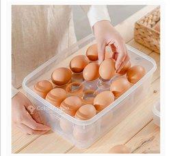 Boîte de conservation 40 œufs