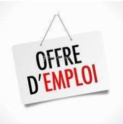 Offre d'emploi - Agent immobilier