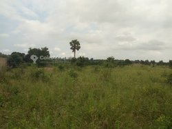 Vente Terrain 2 lots 1/2 - Tabligbo