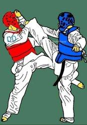 Inscription taekwondo & fitness