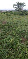 Terrain agricole 1000 m2 - Cocody