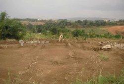 Terrain Agricole 500 m2 - Yopougon