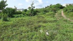 Terrain Agricole 6000 m2 - Yopougon Attingue