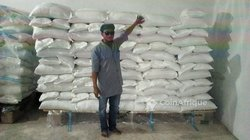 Grain de fonio