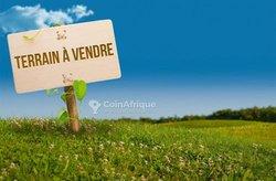 Vente Terrain 5 hectares - Avé