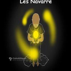Livre Les Navarre