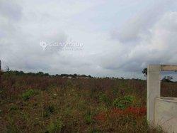 Terrains 500 m²  - Abomey-Calavi