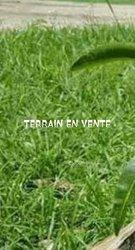 Terrain  20 hectares - Bama