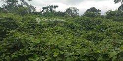 Location Terrains agricoles 180000 m² - Yopougon